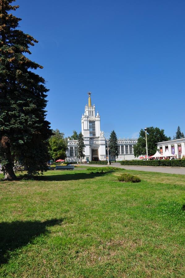 Gasse in der Stadt von Moskau lizenzfreie stockbilder