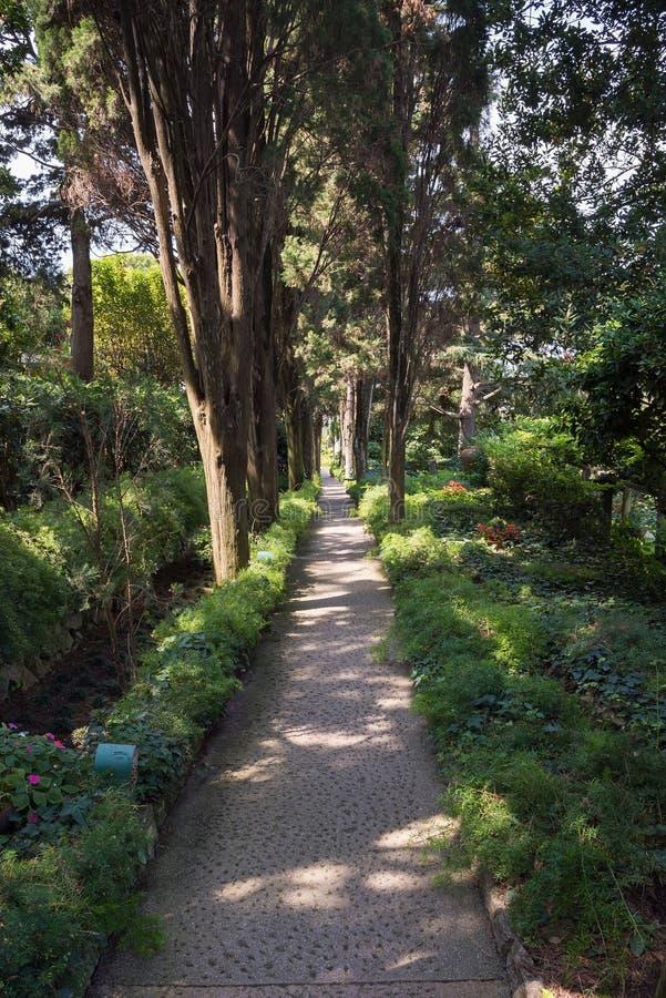 Gasse im Allgemeinen Garten des Landhauses San Michele auf Capri-Insel lizenzfreie stockfotos