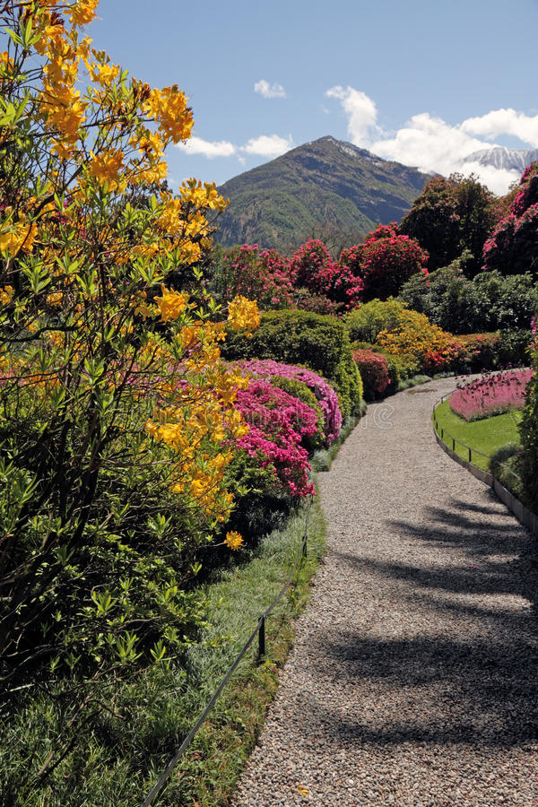 Gasse im Garten auf See Como lizenzfreie stockfotografie