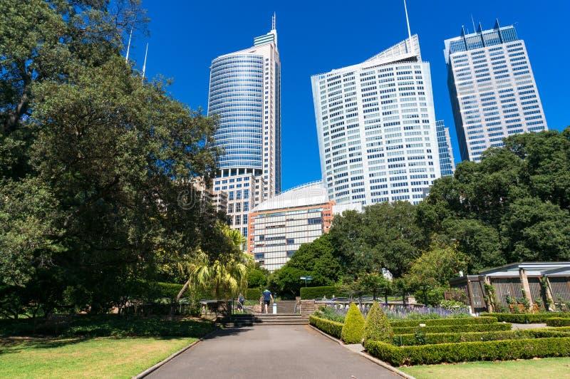 Gasse in Sydney Royal Botanic Garden mit Stadtbild lizenzfreie stockfotografie