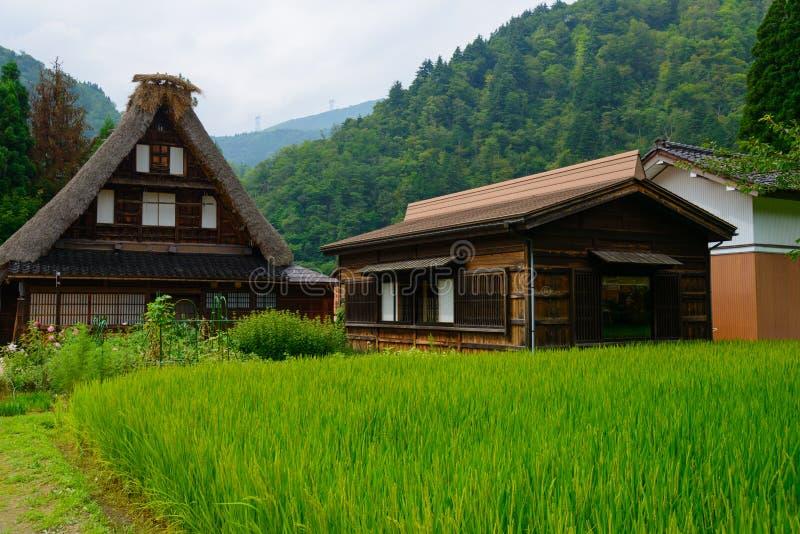 Gassho-zukuri村庄 免版税库存照片