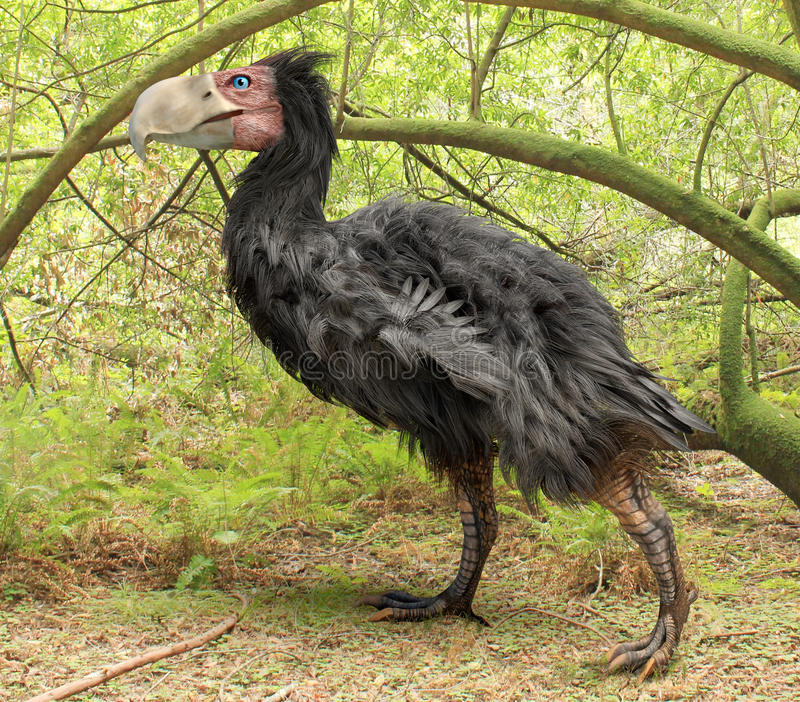 Gastornis在森林(恐怖鸟)里 库存例证