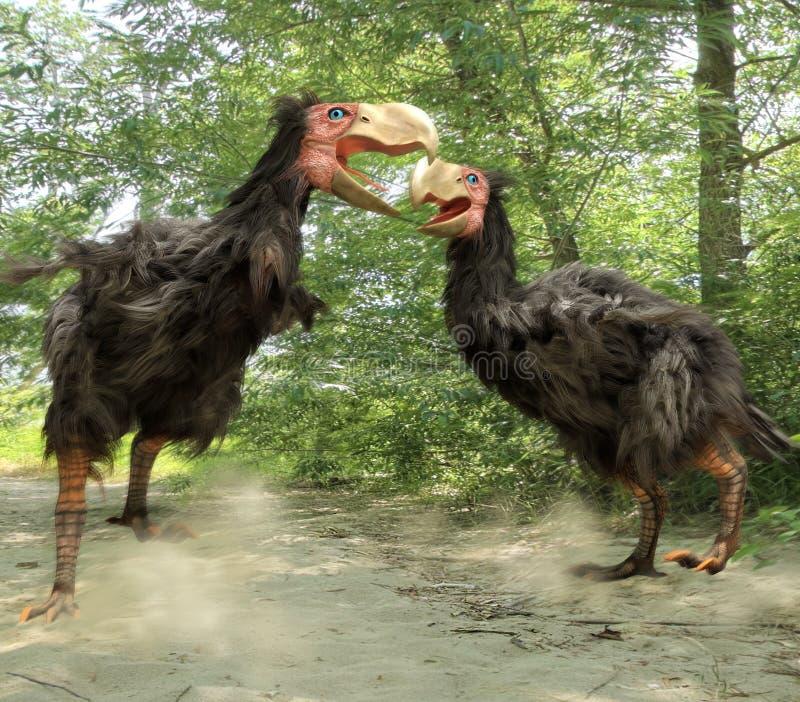 Gastornis het Vechten (Verschrikkingsvogels) stock illustratie