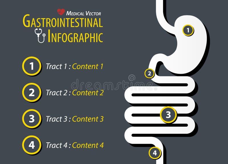 Gastro-intestinale Infographic Vlak Ontwerp royalty-vrije illustratie