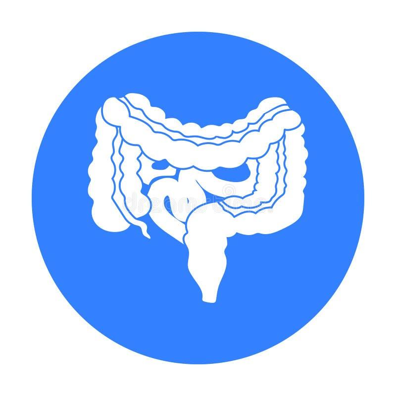 Gastrointestinal obszaru ikona w czerń stylu odizolowywającym na białym tle Organu symbolu zapasu wektoru ilustracja royalty ilustracja