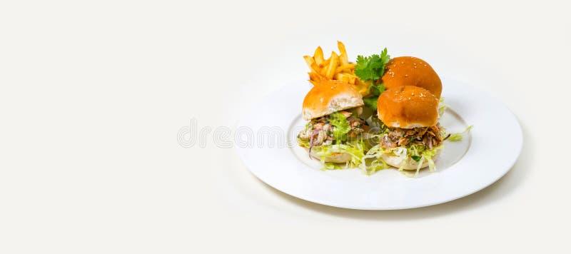 Gastronomisch Barvoedsel op een witte achtergrond stock fotografie