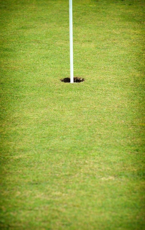 Gat op green van een golfcursus stock foto