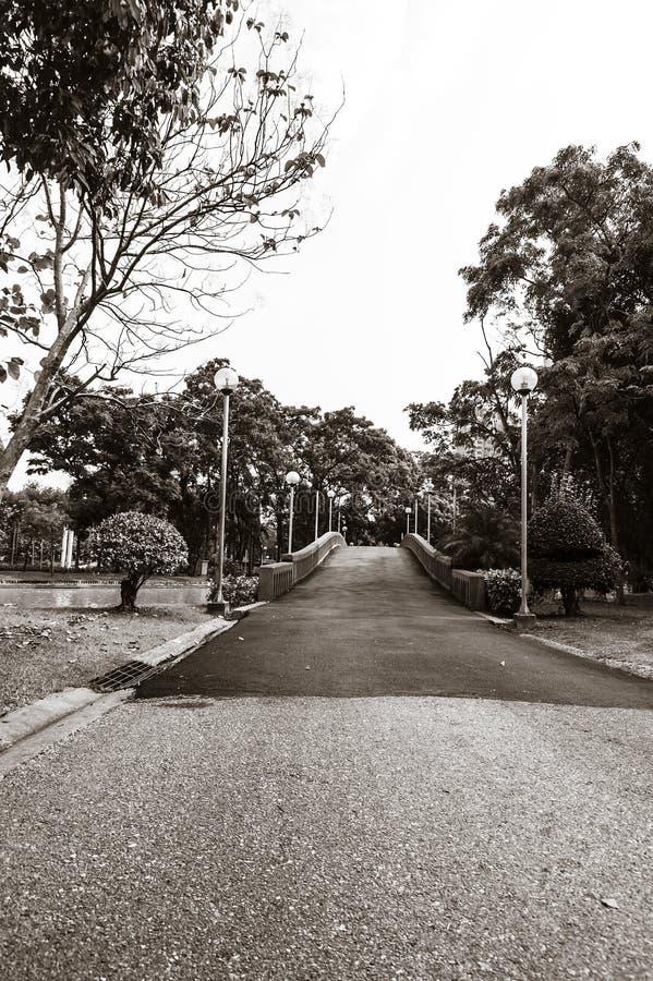 gata arkivbilder