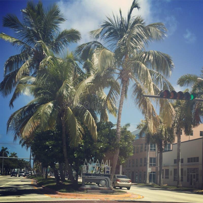 Gata av Miami Beach arkivbilder