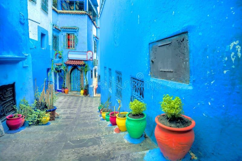 Gata med blåa målade väggar och färgrika blomkrukor i gamla medina av Chefchaouen Den har också varit bekant vid dess portugisisk royaltyfria bilder