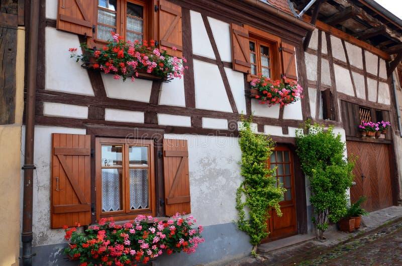 Gata med korsvirkes- medeltida hus i Eguisheim royaltyfri foto