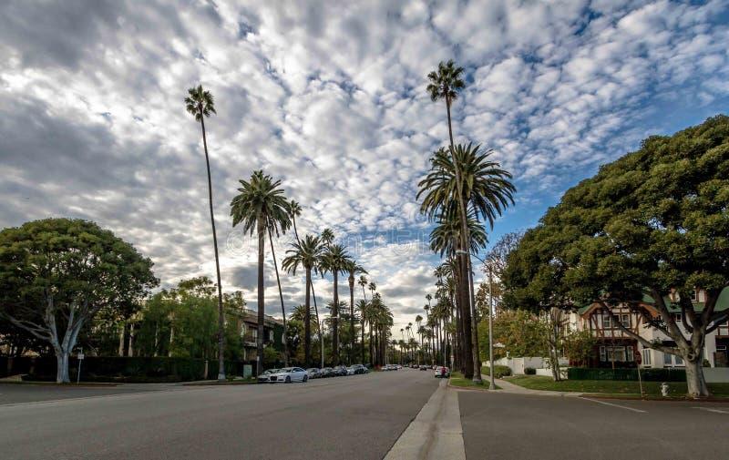 Gata med palmträd i Beverly Hills - Los Angeles, Kalifornien, USA royaltyfri bild