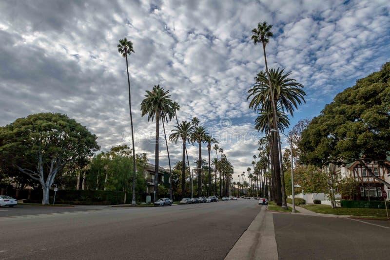 Gata med palmträd i Beverly Hills - Los Angeles, Kalifornien, USA royaltyfria foton