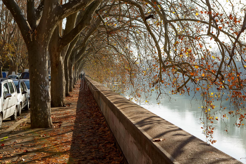 Gata nära den Tiber floden i Rome, Italien arkivfoto
