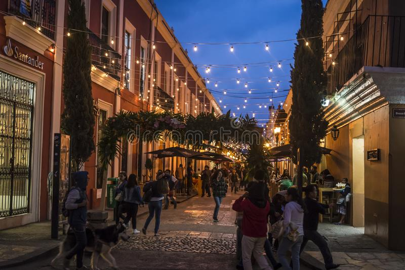 Gata San Cristobal de Las Casas, Chiapas, Mexico royaltyfria bilder