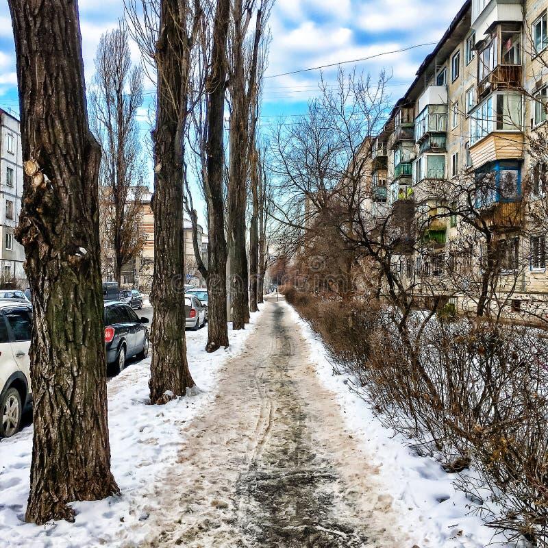 Gata stad, snö, vinter, förkylning, väg, stads- som är snöig royaltyfri bild