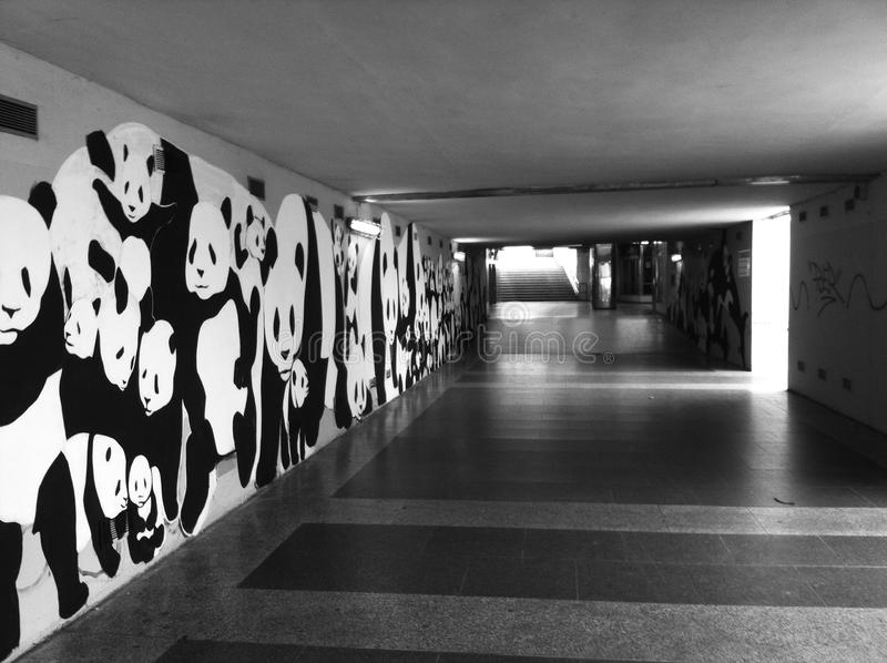 Gatakonst i en gångtunnel royaltyfri bild