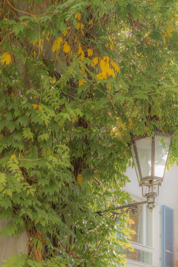 Gatalampor i Chur i Schweiz - 3 arkivfoton
