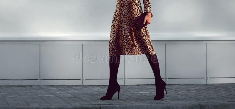 Gatamodebegrepp - stilfull elegant kvinna i leopardklänning fotografering för bildbyråer