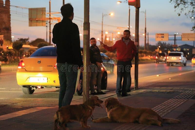 Gatan av Istanbul på natten royaltyfri fotografi