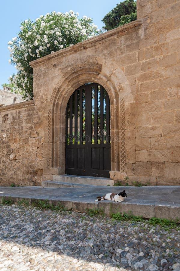 Gatan av riddarna Vara slö katten Rhodes gammal stad, ö av Rhodes, Grekland, Europa royaltyfri fotografi