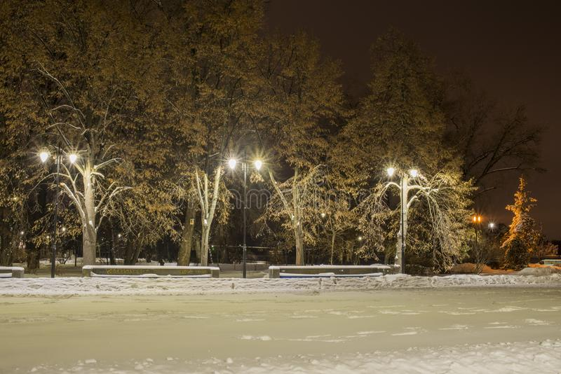 Gatan med lyktor i vinter på natten royaltyfria foton