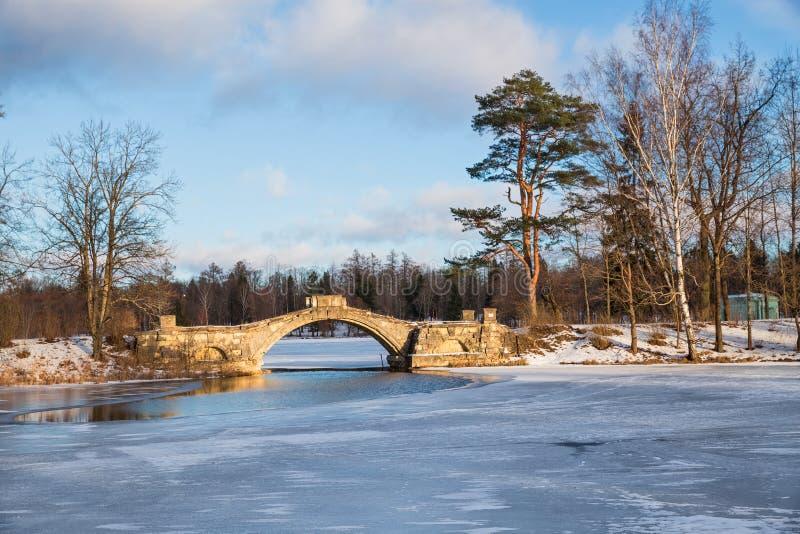 Gatchina公园冬日 库存图片