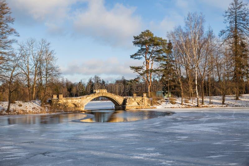 Gatchina公园在冬天 免版税库存图片