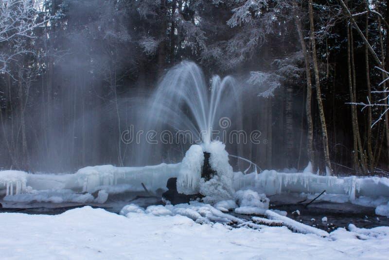 Gatchina geysers arkivbilder