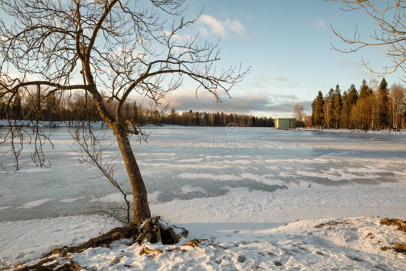 Gatchina park in winter royalty free stock images