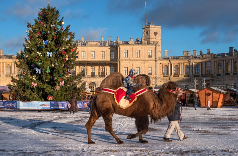 Gatchina, Russia - January 7, 2018: Christmas market on the parade ground in front of the Gatchina Palace. Attraction - stock images