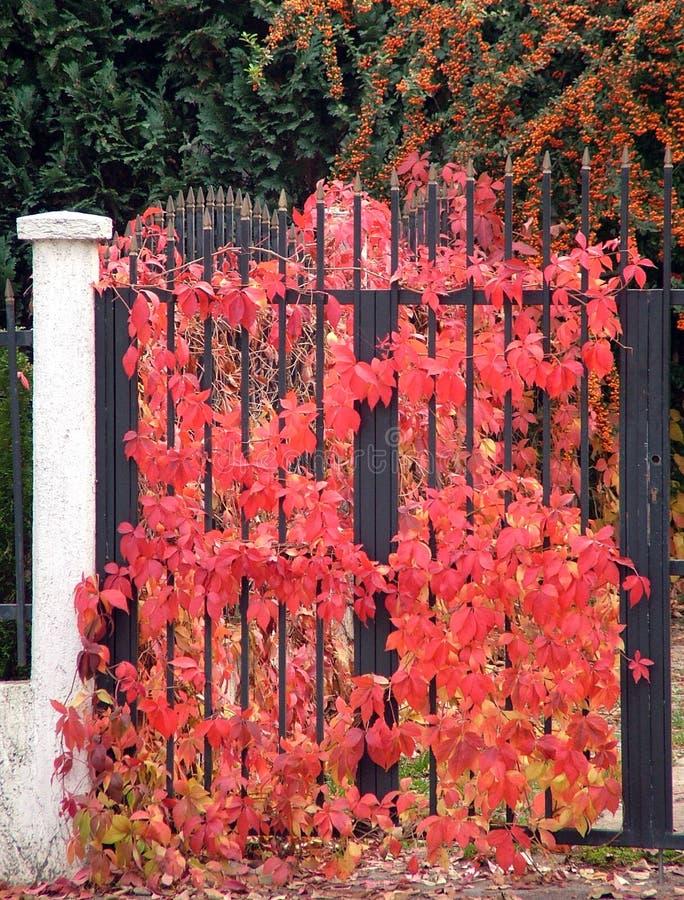 Free Gate Stock Photos - 547293