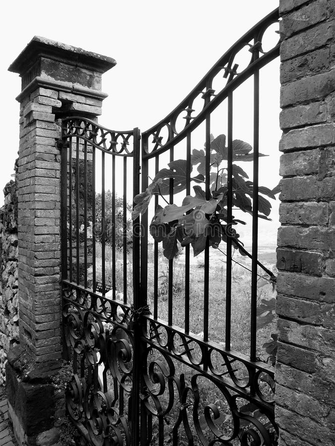Download Gate stock photo. Image of columns, iron, countryside - 31351382