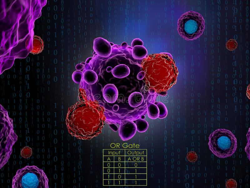 Cancer Immunotherapy With CpG And Anti-OX40 Antibody Stock