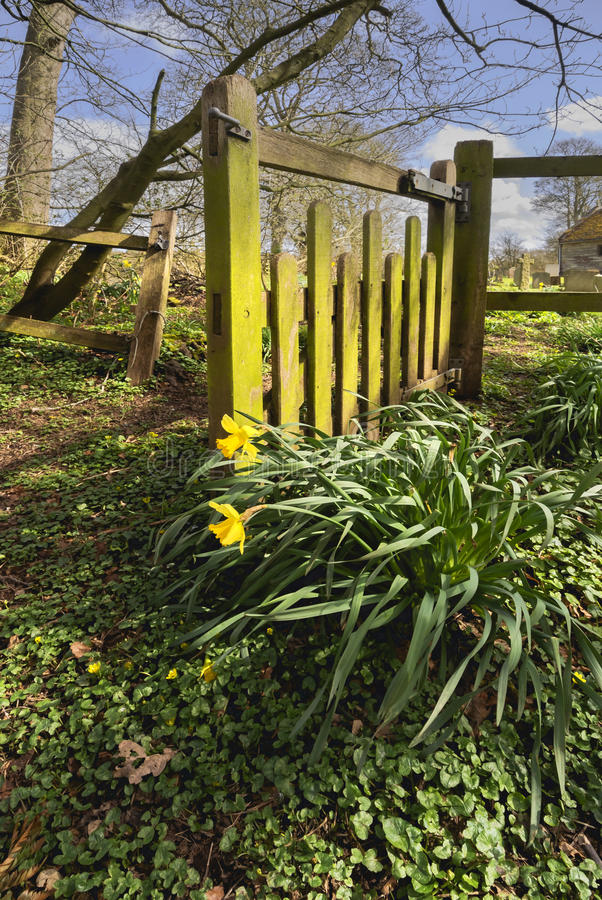 Download Gate stock image. Image of close, accessibility, bridleway - 30445953