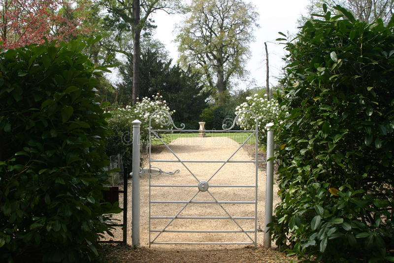 Gate opening into garden. Small white metal gate opening into a garden with gravel path with trees and shrubs royalty free stock images