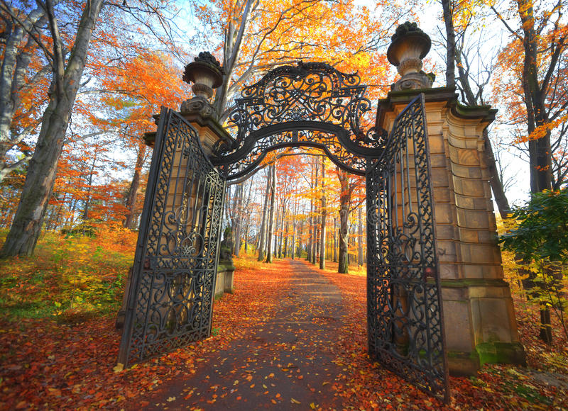 Gate in Park royalty free stock photos