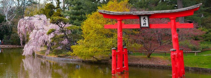 The gate of the shrine is Japan. The Reds. Spring. Sakura stock photos