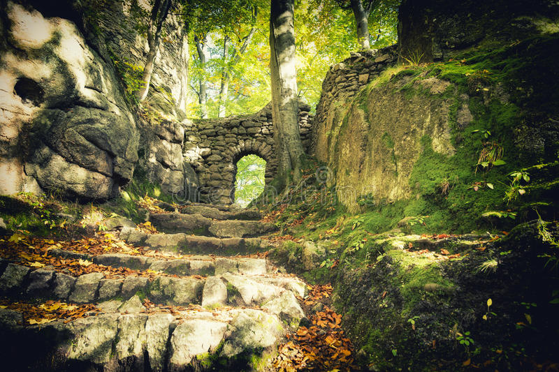 Gate to the enchanted forest royalty free stock photos