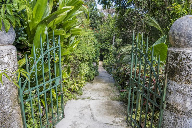 Gate to wonderful park, Barbedos. stock photo