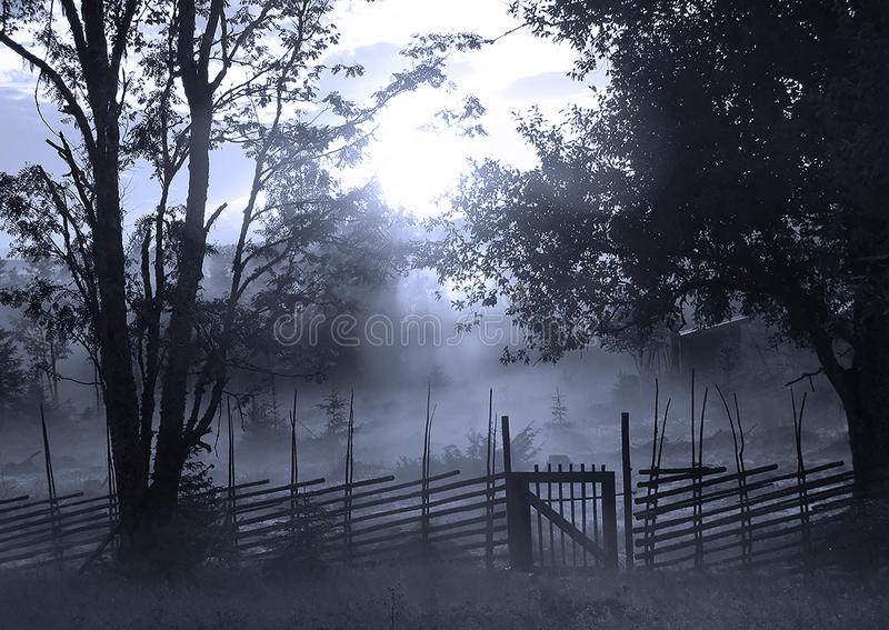Gate in twilight royalty free stock images
