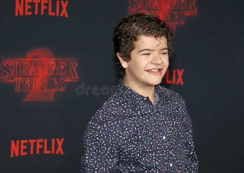 Gaten Matarazzo. At the Netflix`s season 2 premiere of `Stranger Things` held at the Regency Village Theatre in Westwood, USA on October 26, 2017 royalty free stock images