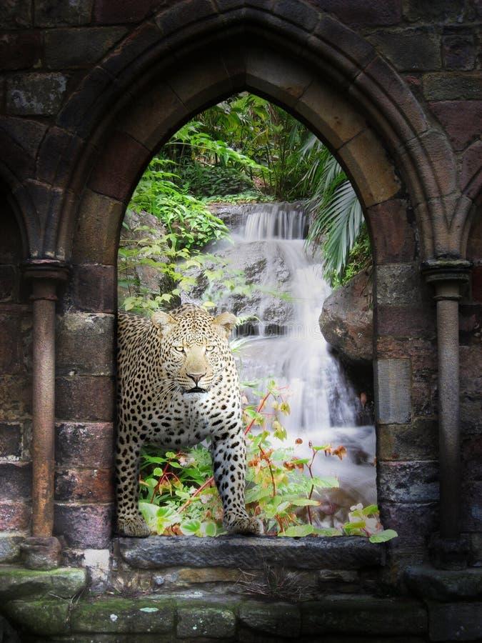Gateway da selva foto de stock royalty free