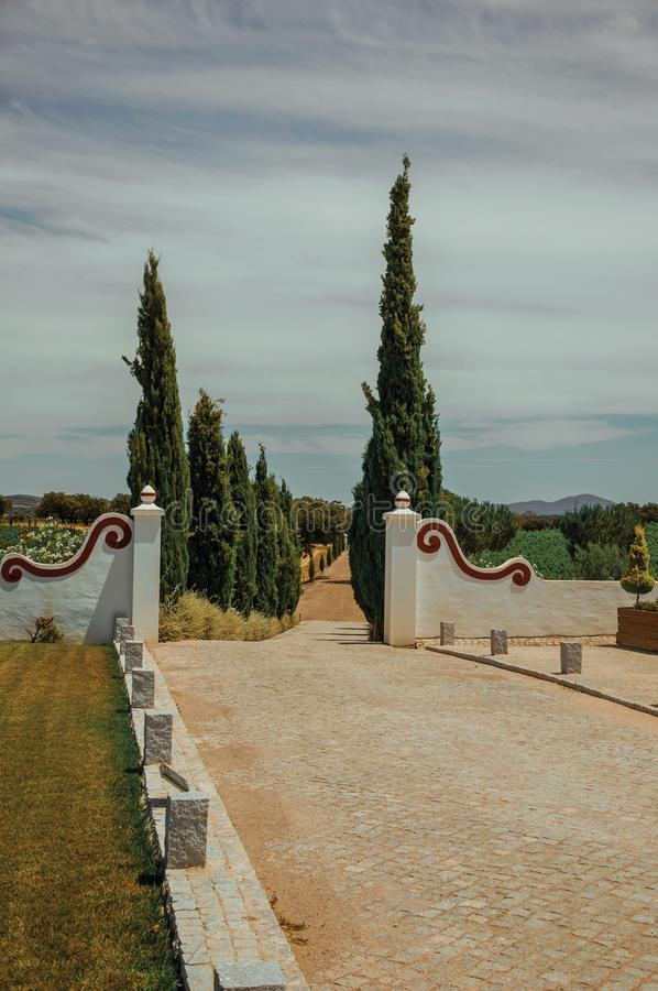 Gateway and path with poplars in a vineyard. Charming decorated gateway and wall made in masonry with path encircled by poplars, in vineyard near Estremoz. A royalty free stock photos