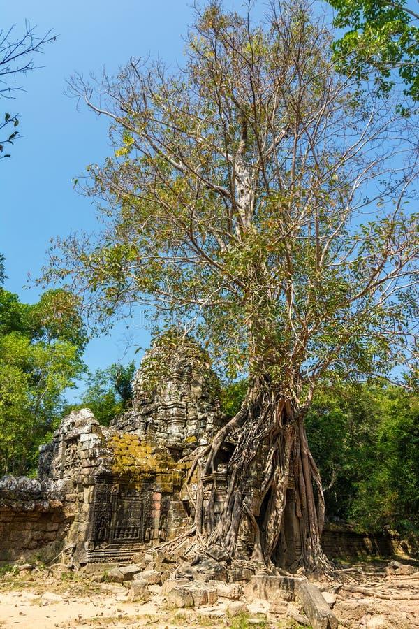 Gateway to Ta Som Temple, Siem Reap, Cambodia stock photo