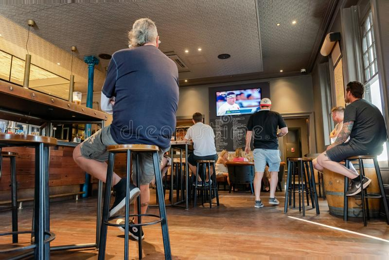 Men watching World Cup rugby game at pub. royalty free stock photography