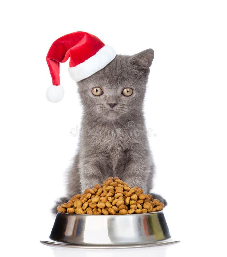 Gatinho no chapéu vermelho de Santa com a bacia de comida de gato seca No branco foto de stock