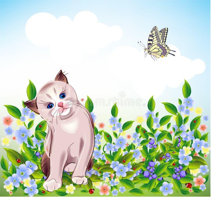 gatinho no prado ilustração stock
