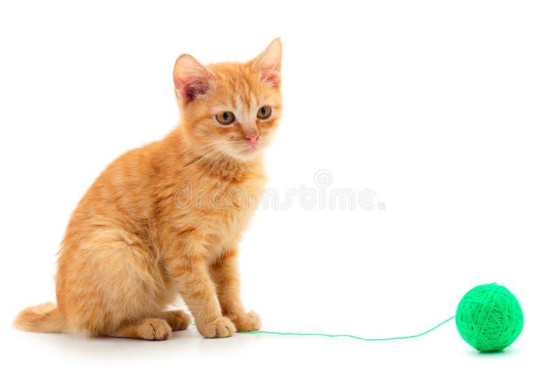 Gatinho pequeno que joga com uma bola do fio foto de stock