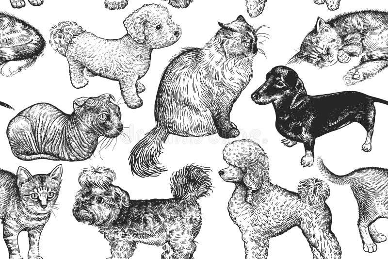 Gatinhos bonitos e cachorrinhos Teste padrão sem emenda ilustração stock